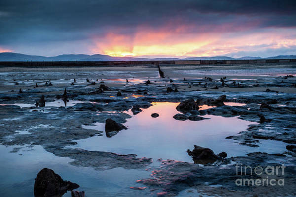 Photograph - Sunrise Over The Bronze Age Sunken Forest At Borth On The West Wales Coast Uk by Keith Morris