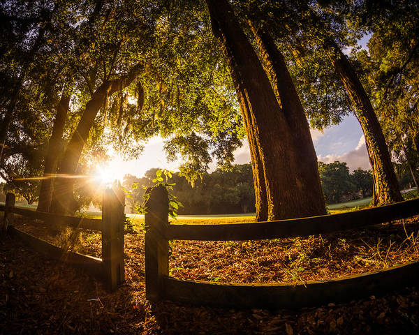 Photograph - Sunrise Over The Fence by Chris Bordeleau