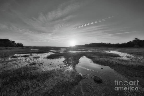 Mike D Photograph - Sunrise Over The Marsh Bw by Michael Ver Sprill
