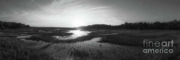 Marsh Grass Photograph - Sunrise Over The Marsh Panorama Bw by Michael Ver Sprill
