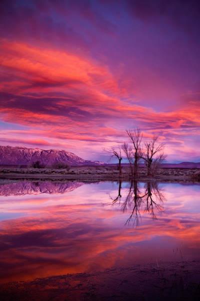 Bishop Photograph - Sunrise Over The Tablelands by Dan Holmes