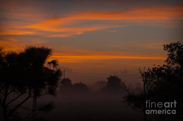 Photograph - Sunrise Over The Wetlands by Photos By Cassandra