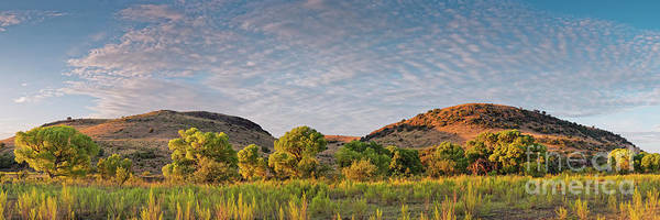 Photograph - Sunrise Panorama Of Cottonwoods Along Limpia Creek - Davis Mountains West Texas by Silvio Ligutti