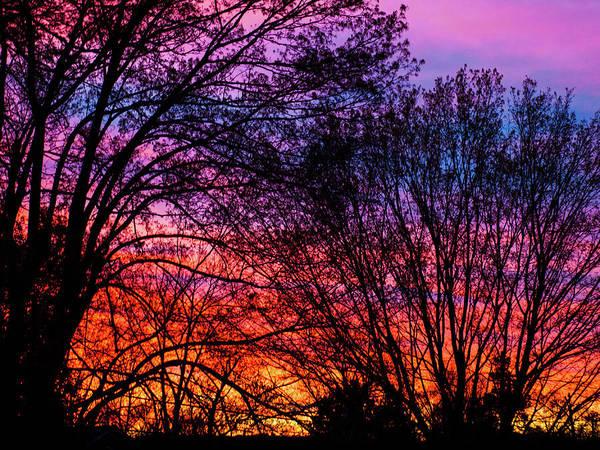 Photograph - Sunrise by Randy Sylvia