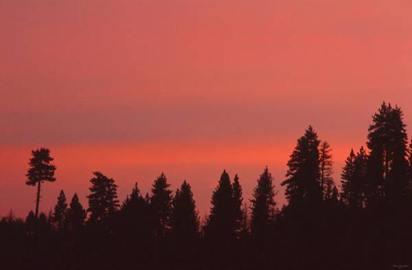 Figueroa Mountain Photograph - Sunrise - Ranger Peak by Soli Deo Gloria Wilderness And Wildlife Photography
