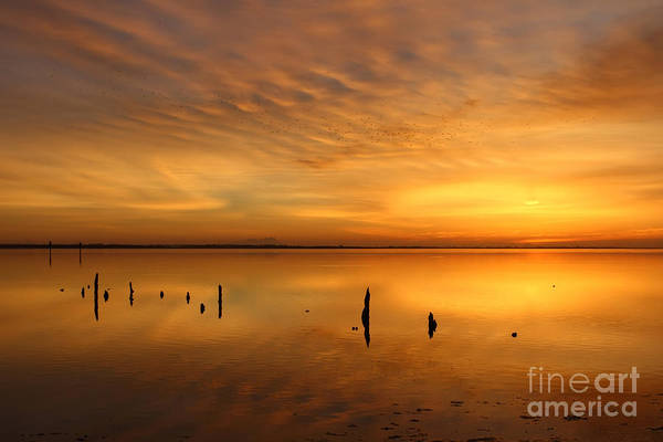 Wall Art - Photograph - Sunrise Reflections  by Rick Mann