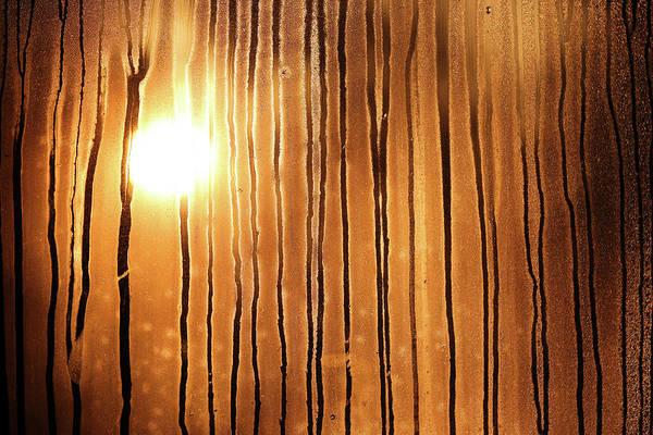 Sunrise Art Print by Robin Street-Morris