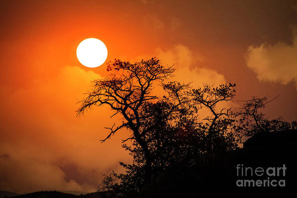 Photograph - Sunrise by Scott Kemper