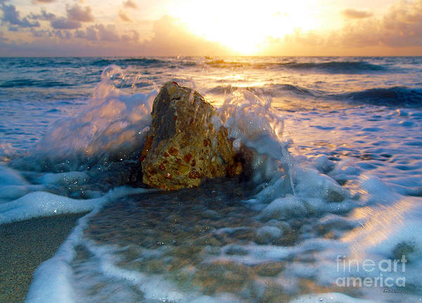 Photograph - Sunrise Seascape Wisdom Beach Florida C2 by Ricardos Creations