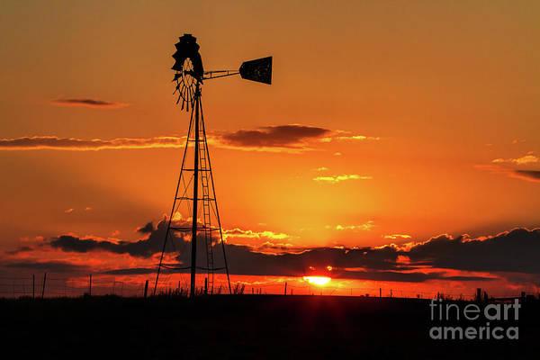 Photograph - Sunrise Silhouette by Jim Garrison