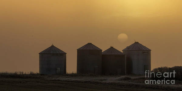 Photograph - Sunrise Through The Fog by Brad Allen Fine Art