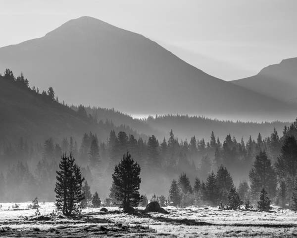 Photograph - Sunrise Tuolumne Meadow by Anthony Bonafede