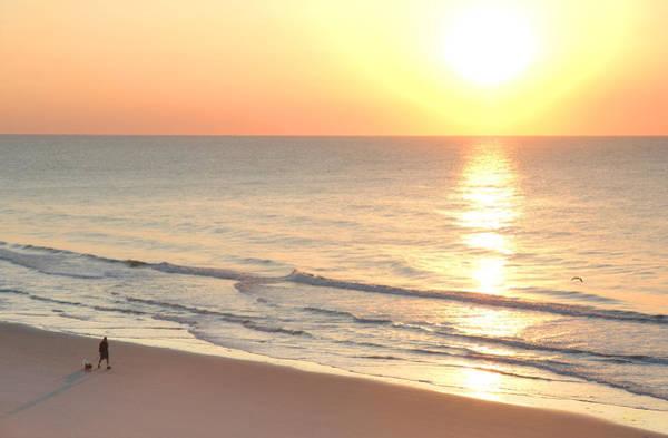 Photograph - Sunrise Walk by Sam Davis Johnson