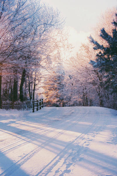 Photograph - Sunrise Winter Wonderland by Parker Cunningham