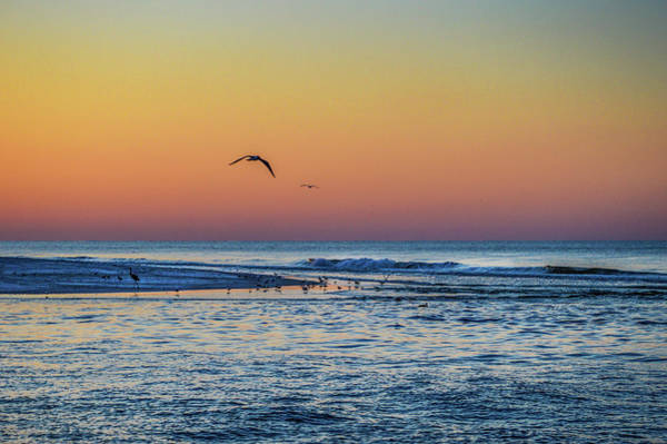 Photograph - Sunrise With The Birds At Little Lagoon Pass by Michael Thomas