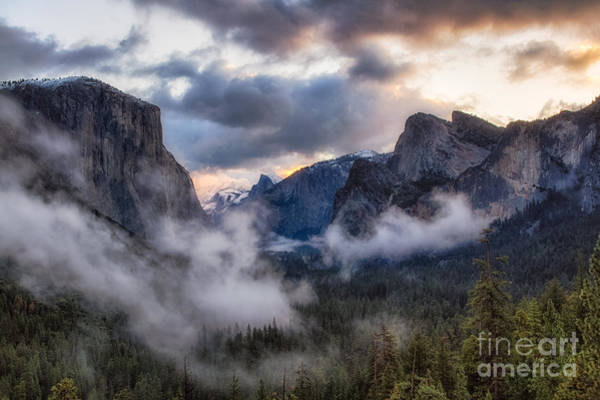 Photograph - Sunrise Yosemite  by Anthony Bonafede
