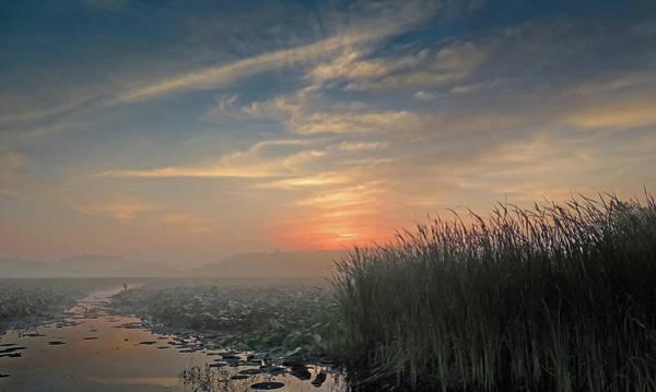 Photograph - Sunrise Through The Fog by Robert Mitchell