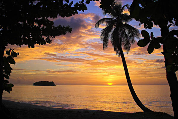 St. Lucia Photograph - Sunset 3-st Lucia by Chester Williams