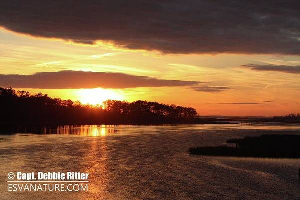 Photograph - Sunset 4484 by Captain Debbie Ritter