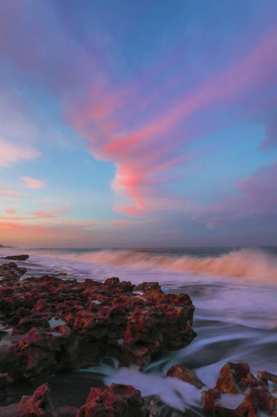 Photograph - Sunset At Coral Cove Park by Juergen Roth