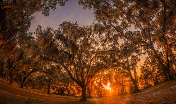 Photograph - Sunset At Gascoigne Bluff by Chris Bordeleau