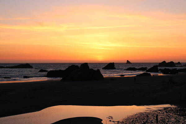 Photograph - Sunset At Harris Beach - 2  by Christy Pooschke