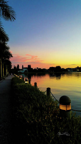 Photograph - Sunset At Ringling Mansion 3 by Susan Molnar