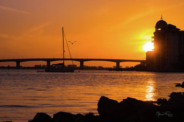 Photograph - Sunset At Sarasota Bayfront Park by Susan Molnar