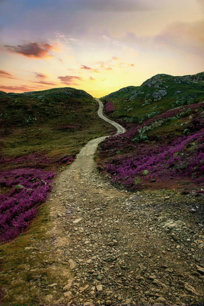 Photograph - Sunset At Skye Island by Jaroslaw Blaminsky