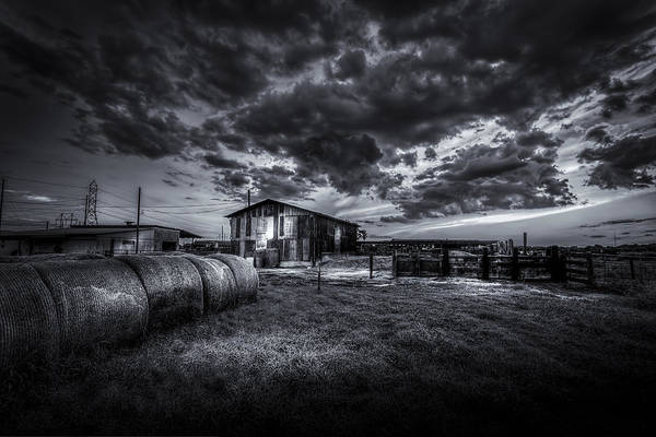 Horse Farm Photograph - Sunset At The Dairy - Bw by Marvin Spates