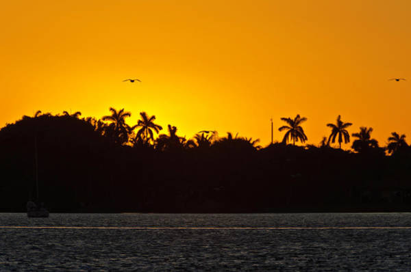 Photograph - Sunset At The Intracostal by Wolfgang Stocker