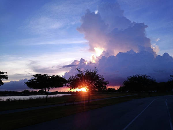 Photograph - Sunset At The Park In Miami Florida by Patricia Awapara