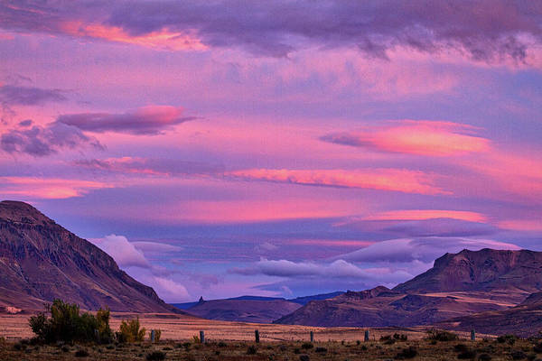 Photograph - Sunset At The Ranch - Patagonia by Stuart Litoff
