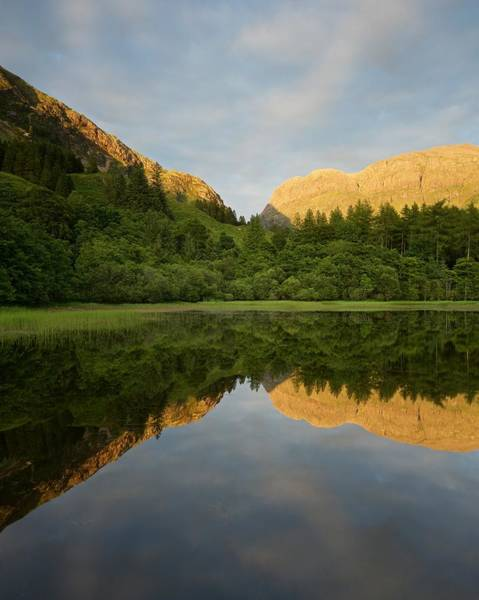 Photograph - Sunset At The Torren Lochan by Stephen Taylor