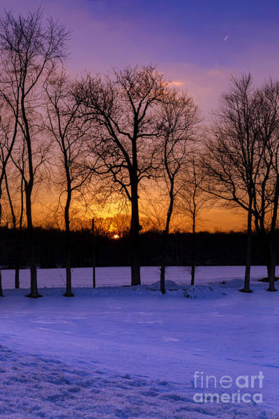 Photograph - Sunset Behind The Trees by Rima Biswas