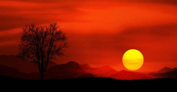 Summer Day Digital Art - Sunset by Bess Hamiti
