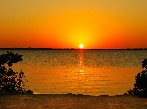 Photograph - Sunset Big Pine Key by Susan Vineyard