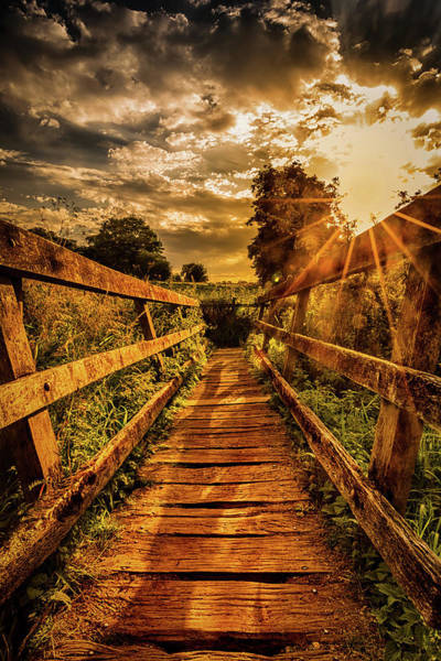 Photograph - Sunset Bridge by Nick Bywater