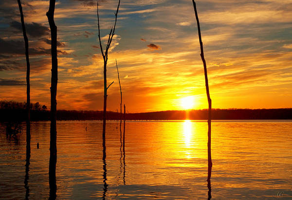 Photograph - Sunset By The Water by Angel Cher