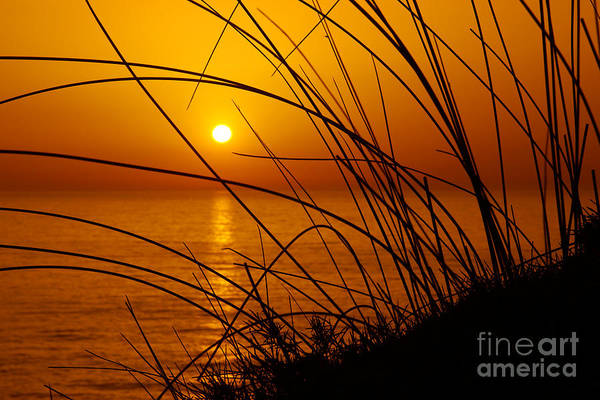 Ocean Breeze Photograph - Sunset by Carlos Caetano