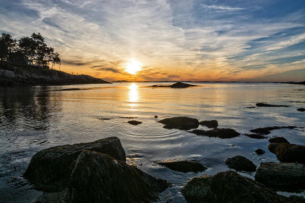 Photograph - Sunset Cove Gloucester by Michael Hubley