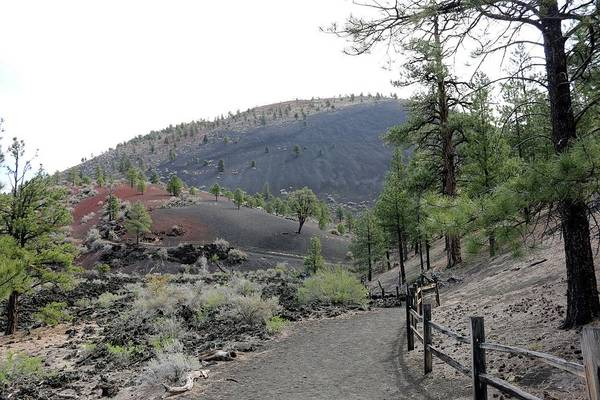 Photograph - Sunset Crater Volcano National Monument - 5 by Christy Pooschke