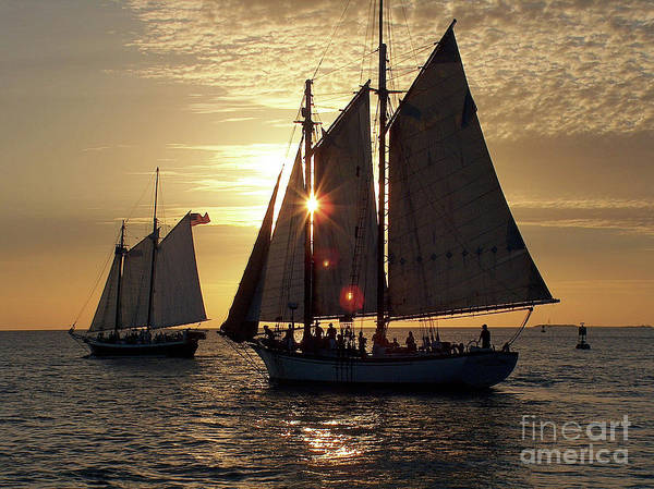Photograph - Sunset Cruise On Key West by Kevin McCarthy