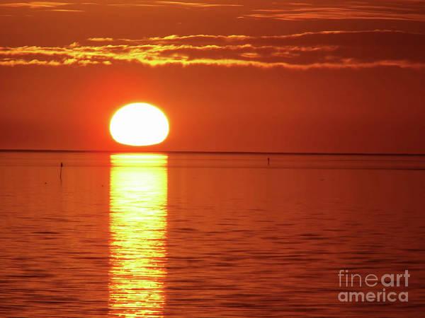 Cedar Key Photograph - Sunset  by D Hackett