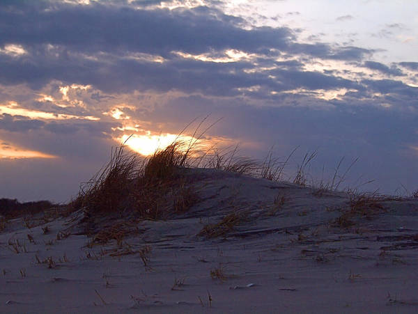 Photograph - Sunset Dunes by  Newwwman