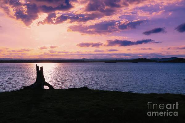 Photograph - Sunset Euphoria by Rachel Cohen