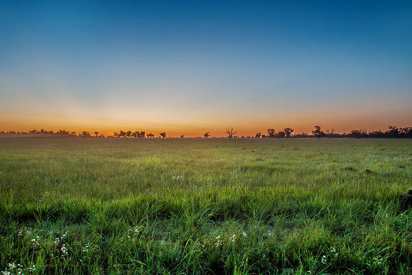 Weeds Photograph - Sunset Fields by Az Jackson