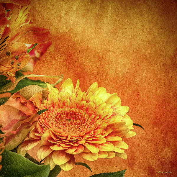 Wall Art - Photograph - Sunset Flowers by Wim Lanclus