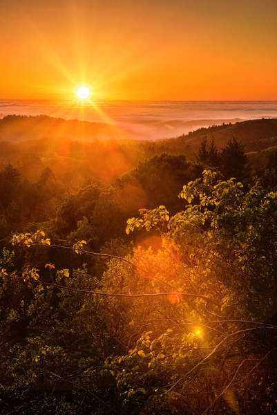 Photograph - Sunset Fog Over The Pacific #2 by Bryant Coffey