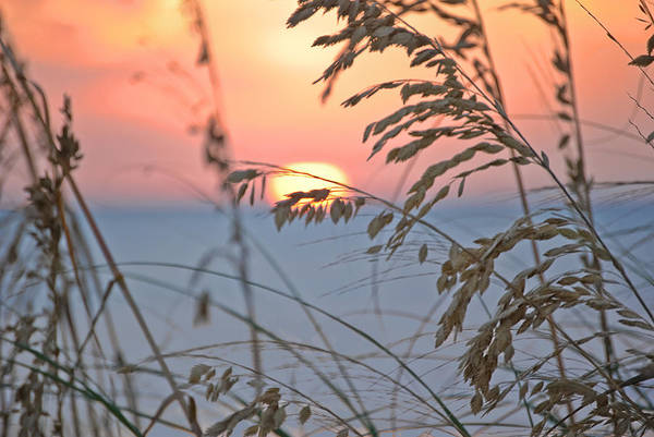 Photograph - Sunset, Ft Desoto by Gene Norris